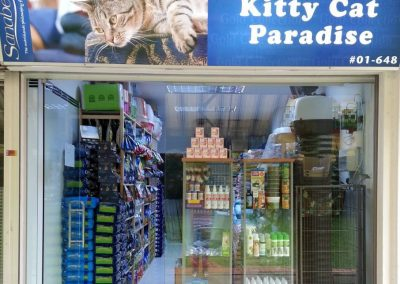 Kittycat Paradise